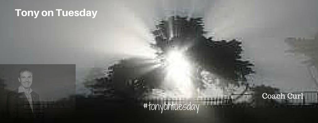 Tony on Tuesday - Coach Curl
